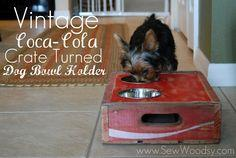 Build A Dog Feeder With Free Plans At Dogcatpin Com